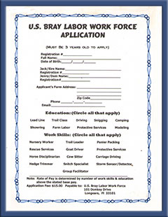 Bray Labor Work Force Application